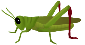 Grasshopper PNG Clipart PNG Clip art