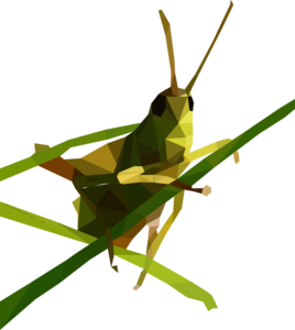 Grasshopper PNG Free Download PNG Clip art