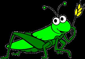 Grasshopper PNG Pic PNG Clip art