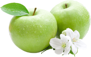 Green Apple PNG Image PNG Clip art