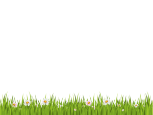 Green Background PNG Clipart PNG icons