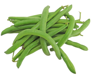 Green Beans PNG Image PNG Clip art