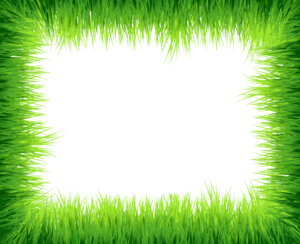 Green Border Frame PNG Photos PNG Clip art