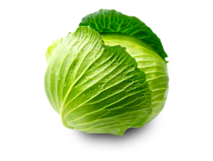 Green Cabbage PNG PNG images