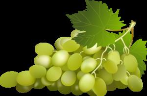Green Grapes Clip Art PNG PNG Clip art