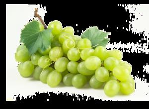 Green Grapes PNG PNG Clip art