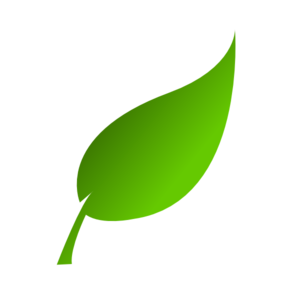 Green Leaf PNG Photo PNG Clip art