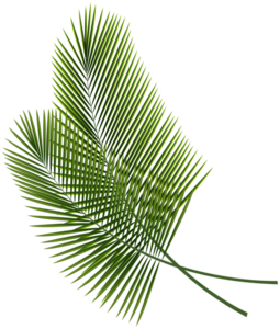 Green Palm Leaves PNG File PNG Clip art
