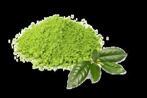Green Tea PNG Pic PNG Clip art
