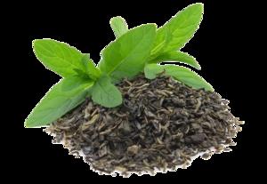 Green Tea Transparent Background PNG Clip art