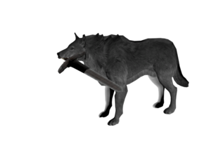 Grey Wolf PNG File PNG Clip art