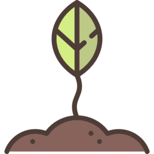 Growing Plant PNG Clipart PNG Clip art