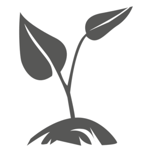 Growing Plant PNG Pic PNG Clip art
