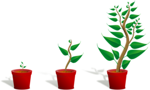 Growing Plant PNG Transparent PNG icon