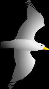 Gulls PNG Transparent HD Photo PNG Clip art