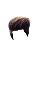 Hair PNG Photo PNG Clip art
