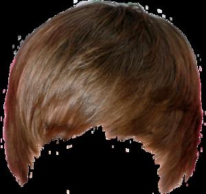 Hair PNG Pic PNG Clip art