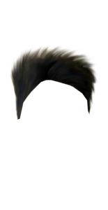Hair PNG Transparent Image PNG Clip art