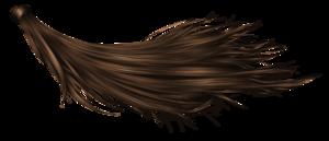Hair Transparent Background PNG Clip art