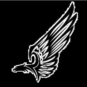 Half Wings PNG HD PNG Clip art