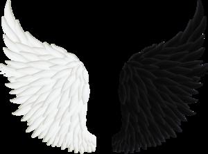 Half Wings PNG Transparent Image PNG Clip art