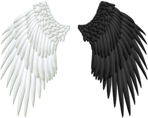Half Wings PNG Transparent PNG Clip art