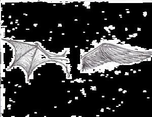 Half Wings Transparent Background PNG Clip art