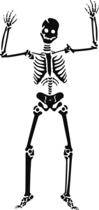 Halloween Skeleton PNG HD PNG icon