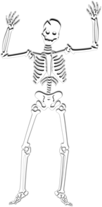 Halloween Skeleton PNG Photos PNG Clip art