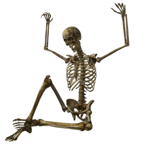 Halloween Skeleton PNG Pic PNG icon