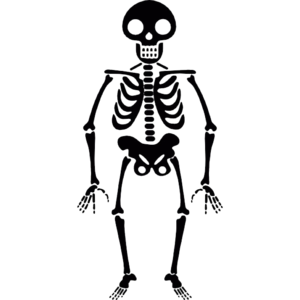 Halloween Skeleton Transparent PNG PNG Clip art