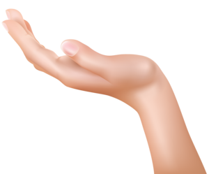 Hand PNG HD Quality PNG Clip art