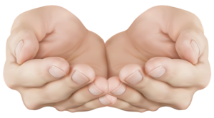 Hand PNG Image Free Download PNG Clip art