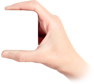 Hand PNG Pic Background PNG Clip art