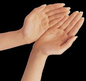 Hand PNG Transparent Background PNG Clip art