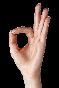 Hand PNG Transparent PNG Clip art