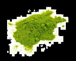 Holi Color PNG Photos PNG Clip art