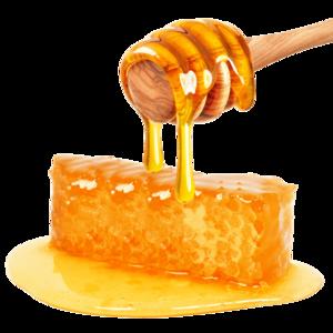 Honey PNG File PNG Clip art