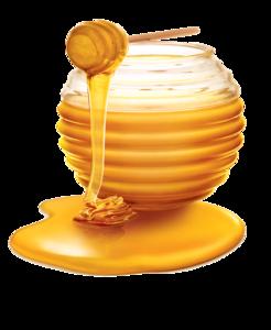 Honey PNG Photos PNG Clip art