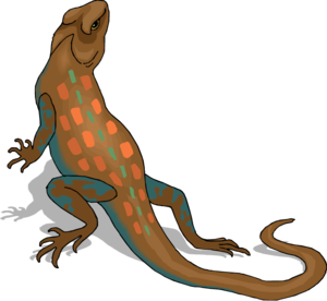 Horned Lizard PNG HD PNG Clip art