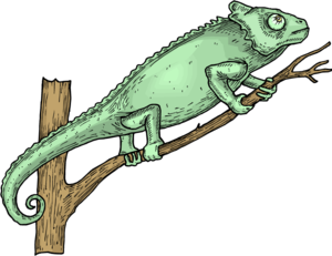 Horned Lizard PNG Picture PNG Clip art