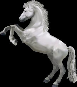 Horse PNG Pic PNG Clip art