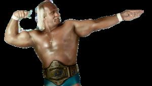 Hulk Hogan PNG Clipart PNG clipart