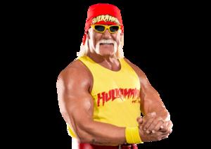 Hulk Hogan PNG Image PNG Clip art