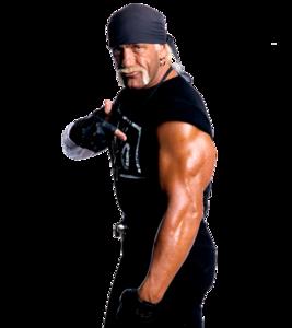 Hulk Hogan PNG Photos PNG clipart