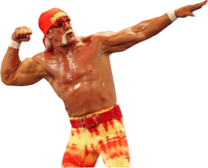 Hulk Hogan PNG Transparent Image PNG clipart