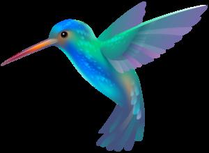 Hummingbird Background PNG PNG Clip art