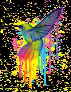 Hummingbird PNG Transparent PNG Clip art