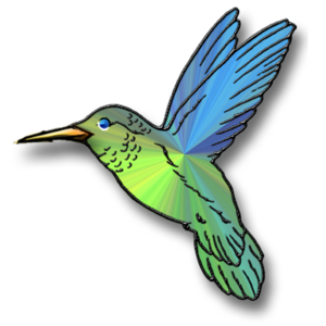 Hummingbird Transparent PNG PNG Clip art