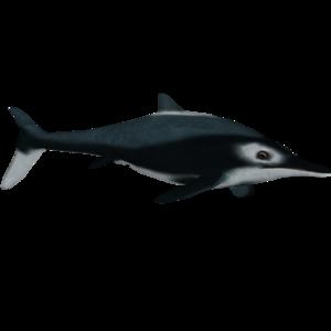 Ichthyosaur Download PNG Image PNG Clip art